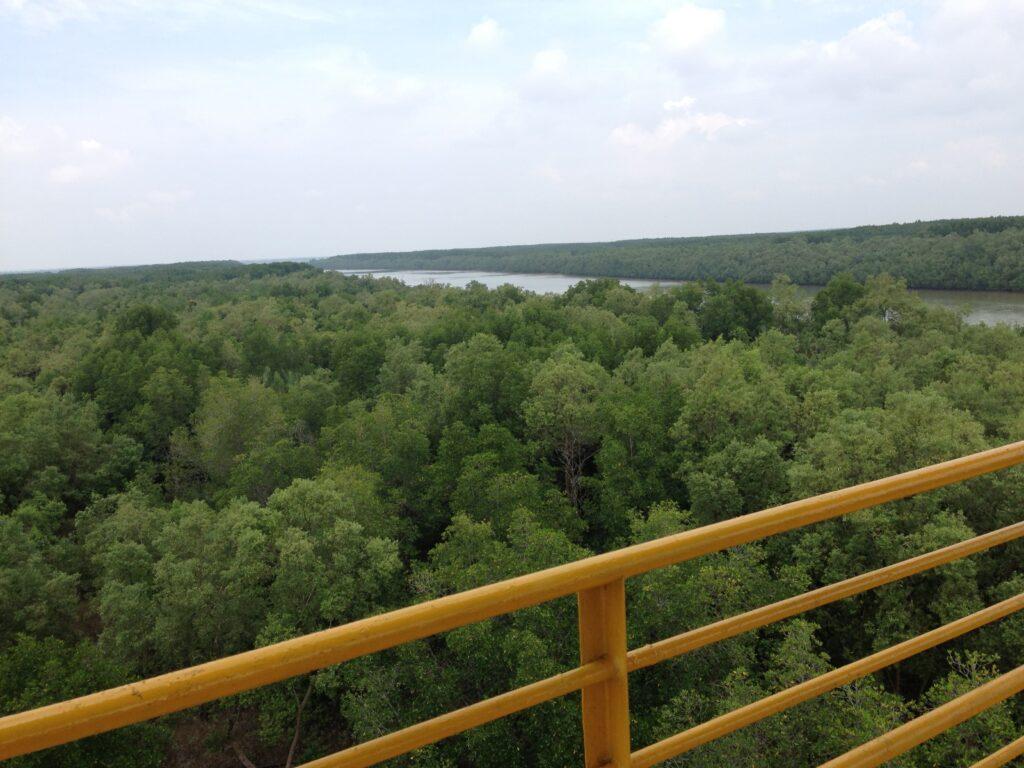 パノラマタワー(展望台)の上からの景色