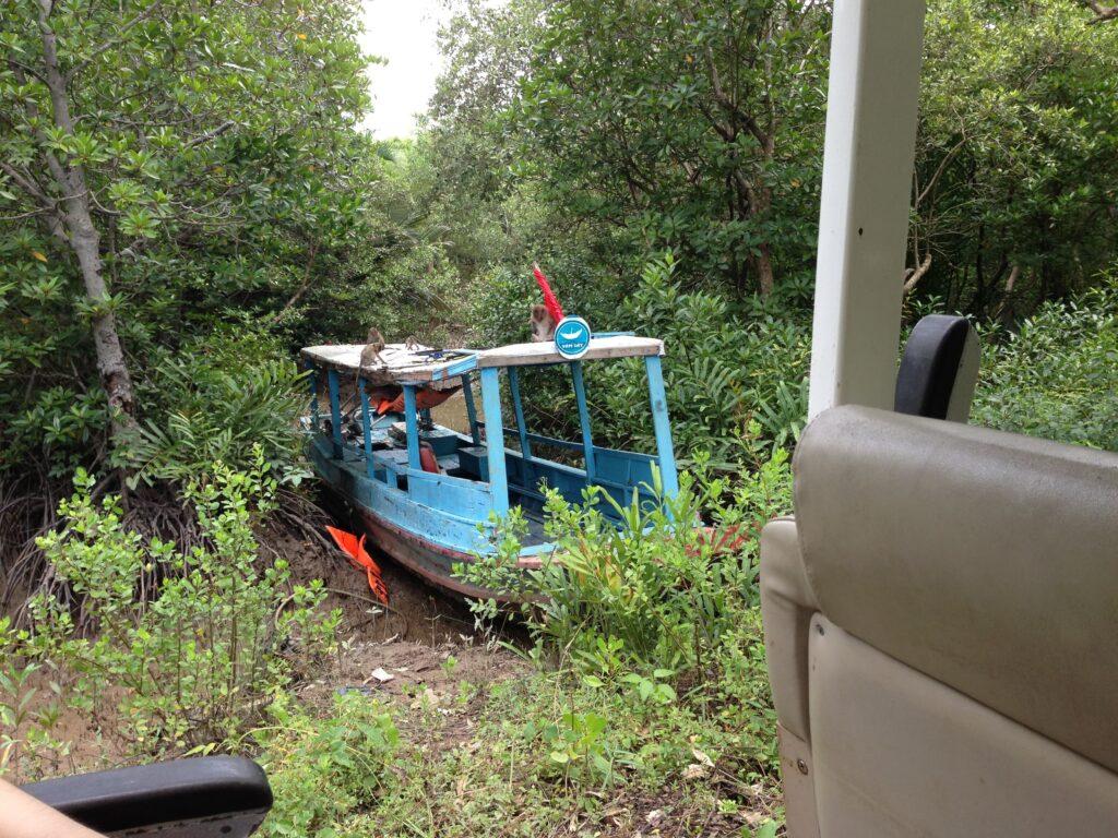 バスから船の上に猿